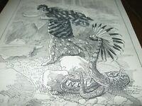1890 Original POLITICAL CARTOON - NON-PC RATTLESNAKE as INDIAN Uprising w SCALP