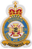 No. CXI (111) Squadron Royal Air Force RAF Crest MOD Embroidered Patch