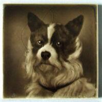 Art Nouveau Vintage Ceramic Tile Rare Reproduct. Majolica George Cartlidge Dog