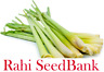 Lemon Grass 50 Seeds Medicinal and Culinary Herb Vegetable for Healthy Lifestyle