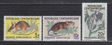 AK57 - ANIMAL KINGDOM STAMPS CENTRAL AFRICA 1966 MOUSE RODENTS MNH