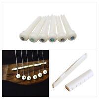 6pcs Bridge Pins + Saddle + Bridge Saddle Bone / Bone Acoustic Guitar White New