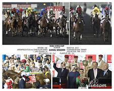 ANIMAL KINGDOM DUBAI WORLD CUP 2013 COMPOSITE PHOTO 10 X 8