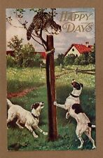 "HAPPY DAYS  2 dogs have a Cat ""up the tree"""