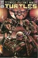 Teenage Mutant Ninja Turtles #107 1:10 Alex McArdell RI Variant IDW Comics TMNT