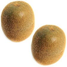 2 Artificial Kiwi Fruit - Decorative Fake Plastic Fruit - Realistic look & feel