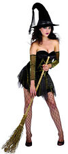 Adult Ladies Womens Sexy Witch Fancy Dress Costume Halloween Horror 10-12 NEW