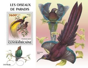Central African Rep Birds of Paradise on Stamps 2021 MNH Birds-of-Paradise 1v SS
