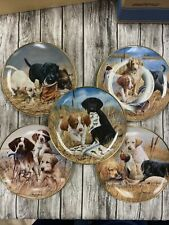 5 Franklin Mint Labrador Retriever Collector Plates James Killen