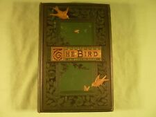 The Bird by Jules Michelet 210 Illustrations by Giacomelli 1879