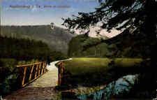 FRANKENBERG Sachsen Partie Lützelhöhe Brücke AK alte Postkarte ungelaufen ~1920
