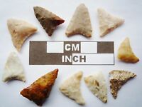 Neolithic Arrowheads, 10 x Triangle Artifacts - 4000BC - (R020)