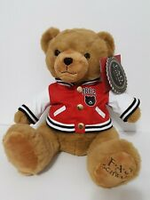 Fao Schwarz Plush Teddy Bear 2019 Brown