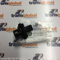 Land Rover Discovery 2 TD5 & V8 Indicator Bulb Holder to 02 - Bearmach - XBP180
