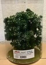 Heki 190002 -- 1 Obstbaum blühend, Höhe 24 cm, Spur 0 / 1 / LGB