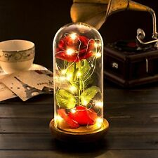 Red Silk Rose and Led Light with Fallen Petals in a Glass Dome on a Wooden Base