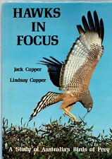 HAWKS IN FOCUS : BIRDS OF PREY IN AUSTRALIA - JACK & LINDSAY CUPPER
