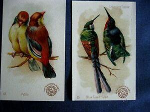 Victorian Trade Card Arm & Hammer BEAUTIFUL BIRDS #10 Blue Sylph #13 Pytila C6
