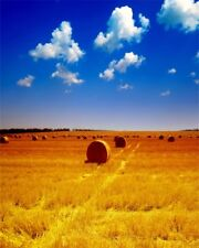 Baby 2x3ft Photo Backgrounds Autumn Wheat Field Vinyl Photography Backdrops Prop
