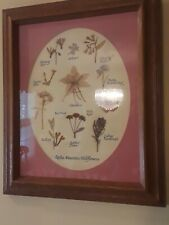 Vintage Rocky Mountain Wildflowers Dried Botanical Made In Colorado Framed Art