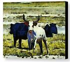 Longhorn Abstract by Barbara Snyder Western Bull Wildlife Canvas Giclee 18x24