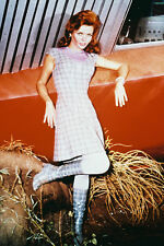 Land Of The Giants Deanna Lund Full Color 11x17 Mini Poster