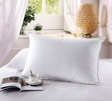 Abripedic Standard Size White Goose Down Pillow Soft Neck Support 600 Tc(Single)