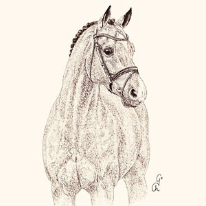 4 Lunch Paper Napkins for Decoupage, Table, Craft, Party, Horse, Catoki