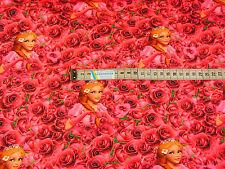 Jersey Stoff Kinderstoff Effteling Dornröschen  ab 50 cm: 2133