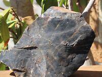Rough and Raw Pilbara Picasso Jasper Crystal - Western Australia - Omni New Age