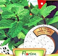 MINT SEED DISC - 10 CM DISC - EASY TO GROW - HIGH QUALITY HERB SEEDS /349