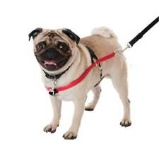 Arneses XS para perros