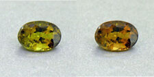 Untreated Ceylon Olive Green Alexandrite  1.26Ct. Certified (00422/FK8-3140315)
