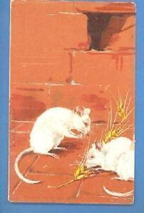 TWO RAT VINTAGE POSTCARD 2308