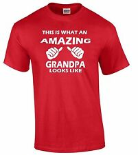 This Is What An Amazing Grandpa Looks Like T-SHIRT Birthday Gift Cool Hoodie Tee