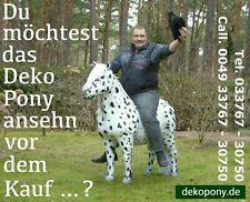 Deko Pony Pferd lebensgroß lebensecht horses horse cheval cavallo paard hest