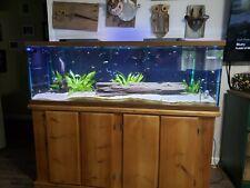 New listing 100 Gallon Aquarium, 5 Feet Long, Fish Tank, Solid Wood Stand, AquaClear 110,Led