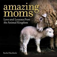 Amazing Moms: Love and Lessons from the Animal Kingdom  LikeNew