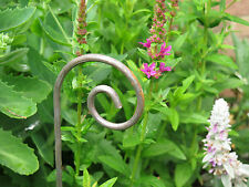 Set of Four Small Metal Garden Rusted Crooks. Stake Allotment Plant Support 67cm