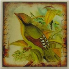 Set of 4 - Handmade Natural Ceramic Tile Stone Drink Coasters - Wild Bird 1 - I