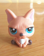 Littlest Pet Shop LPS CW815 Cute Brown Animal Toys For Boys & Girls