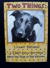Funny Humorous Dog Birthday Card Poop in the Kitchen Birthday Wishes from Dog