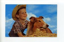 Greetings from Crocker Lake Camps, Jackman Me Maine, boy, straw hat, dog, collie