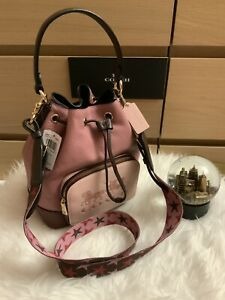 ❤️ NWT Coach Jes Drawstring Bucket Bag In Colorblock With Horse And Carriage