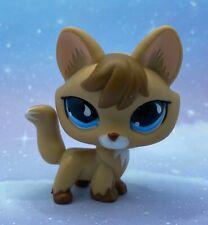 Littlest Pet Shop Authentic # 673 Tan Brown Fox Blue Teardrop Eyes
