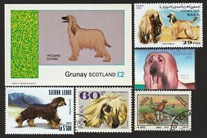 AFGHAN HOUND ** Int'l Dog Postage Stamp Art Collection** Great Gift Idea**