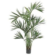 Decorative Natural Looking Artificial Tropical 6' Kentia Palm Silk Tree Plants