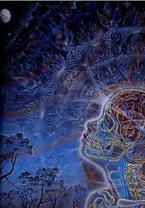 Moon Alex Grey Poster 13x19 Art Print Psychedelic Trippy High Quality B2G1 Free