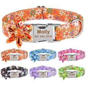 Personalised Floral Dog Collar Girl Female Medium Large Pet Collars Engraved Tag