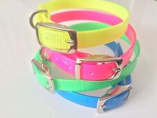 NEW Biothane Dog Collar Black, Blue, Green, Red, Pink, Neon Bright